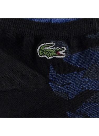 Lacoste Spor Çorap Siyah